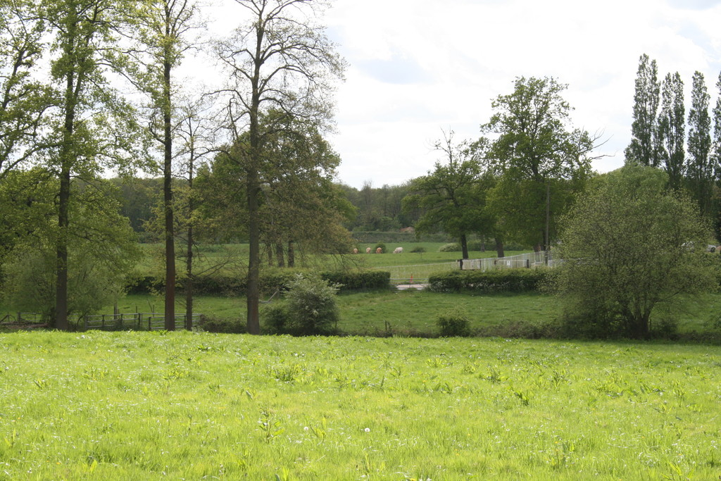 Land at Gatton Park, Redhill