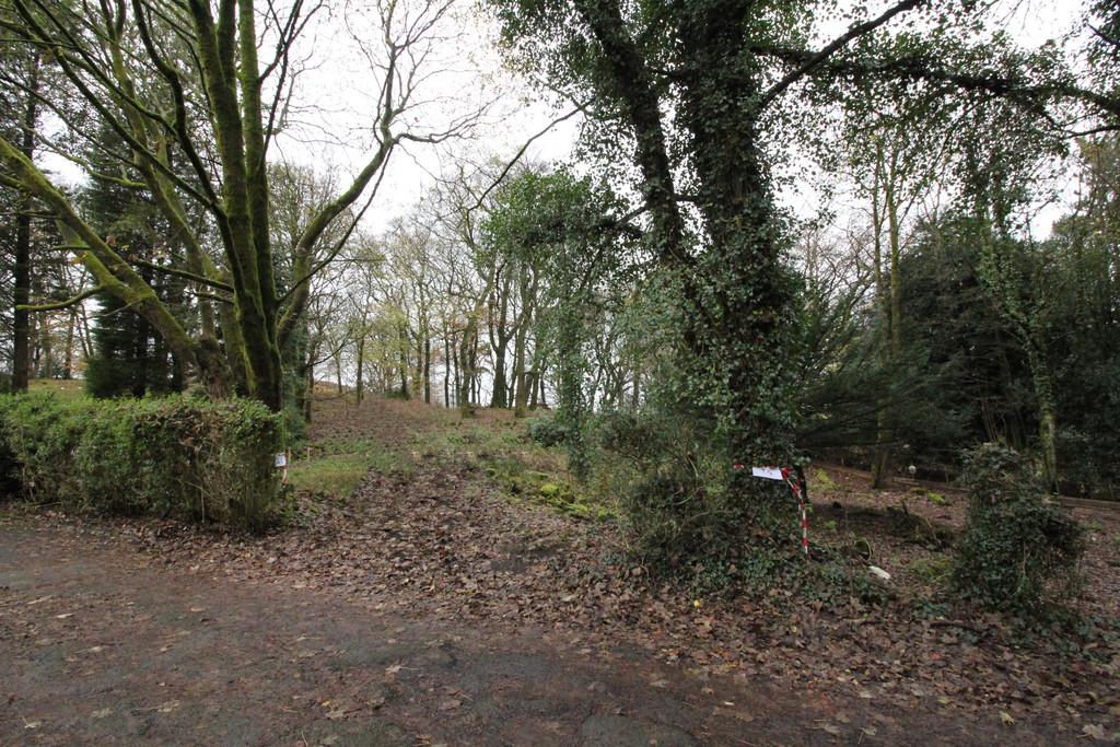 Off Chestnut Grove, Darwen