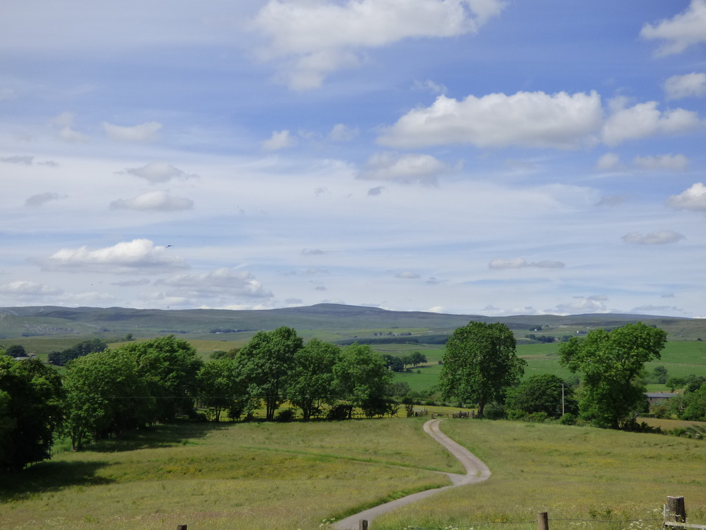 Old Park, South Stainmore