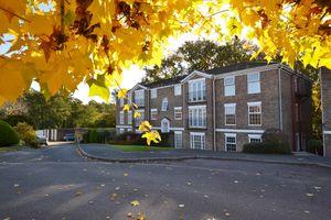 Heathfield Green, Midhurst
