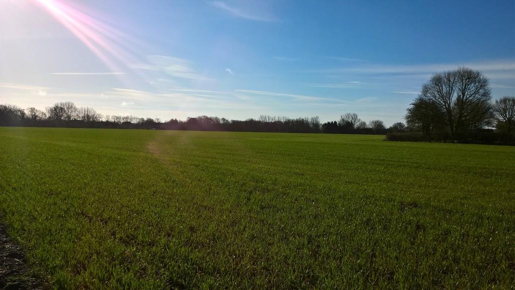 Aslacton, Norwich