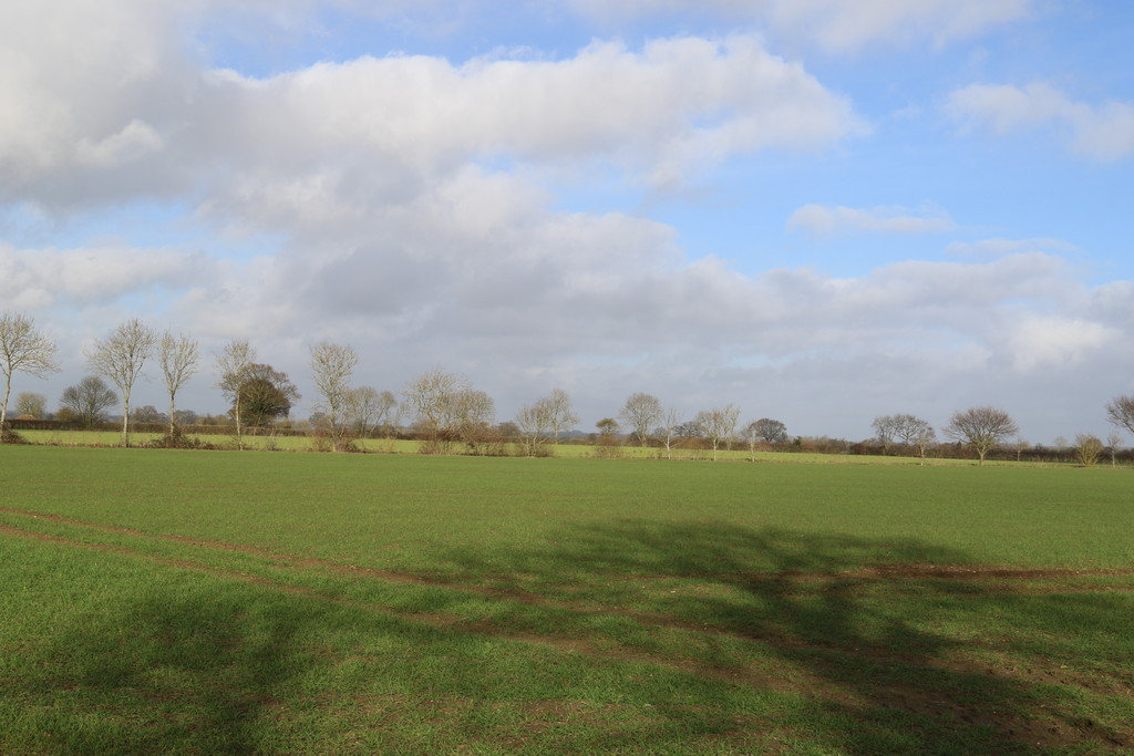 54.99ac Arable Land at Mendham