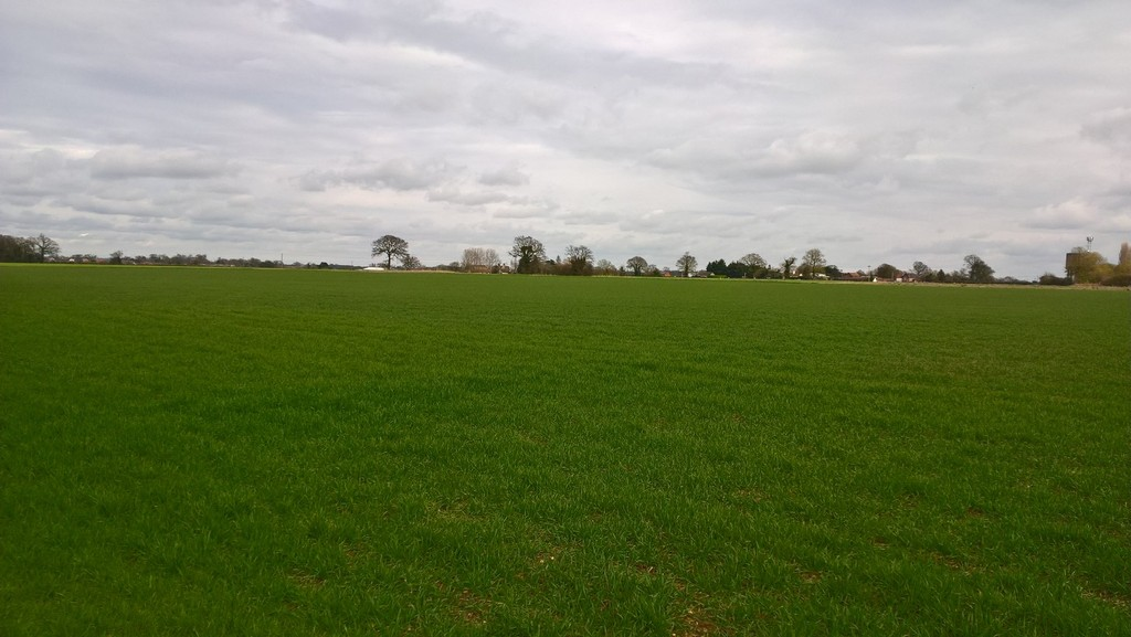 Land at Common Road, Wacton, Diss