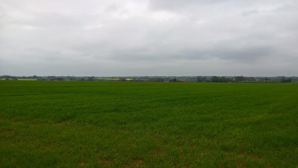 Land at Low Farm, Tibenham