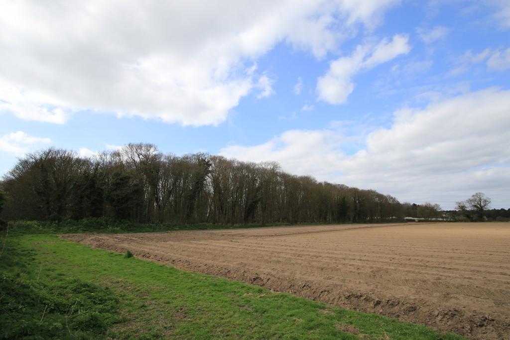 46.08ac (18.64ha) land at Fritton