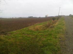 Sawtry Way, Huntingdon