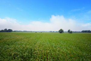 Land at Melbourn