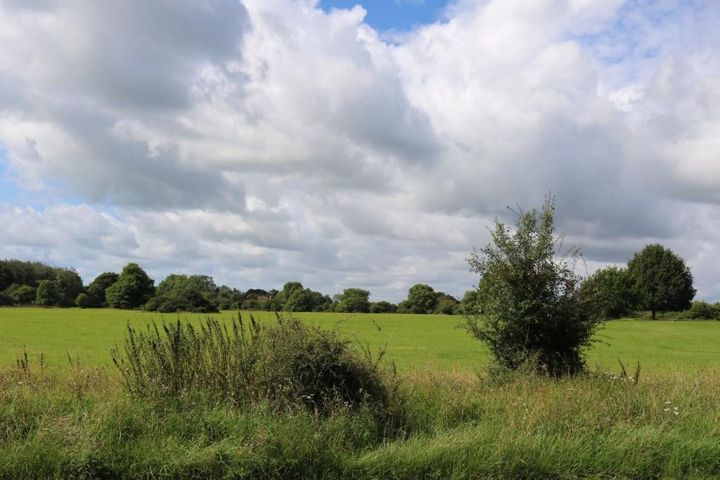 Ibstone, Buckinghamshire